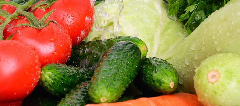 hidromar---blog---cloro-na-higiene-alimentar